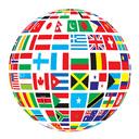 multi devises world flag